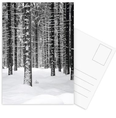 Deep Dark White Forest Postcard Set