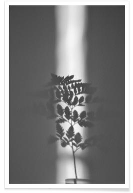 Ray Of Sunlight - Premium Poster