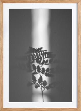 Ray Of Sunlight - Affiche sous cadre en bois