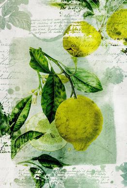 Botanic 1