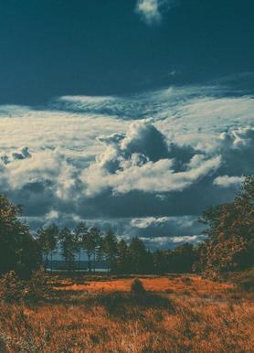 The Flat Land