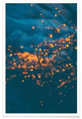 The Particles - Premium Poster