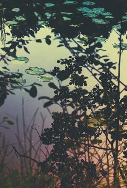 The Afternoon Lake acrylglas print