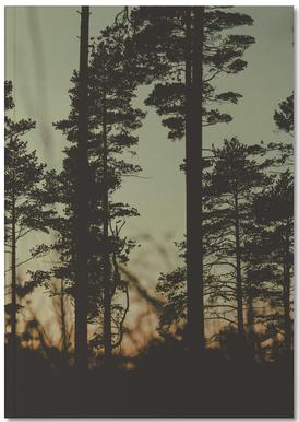 The Forest I Notebook
