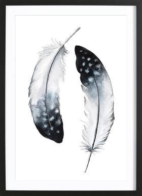 Feathers I