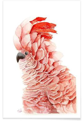 Pink parrot Poster