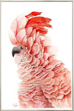 Pink parrot Poster in Aluminium Frame