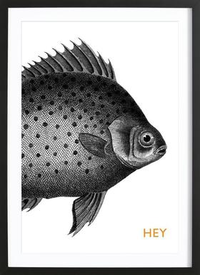 Hey Fish Framed Print