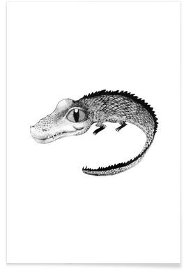 Baby Crocodile Illustration Poster