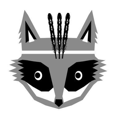Southwest Raccoon -Leinwandbild