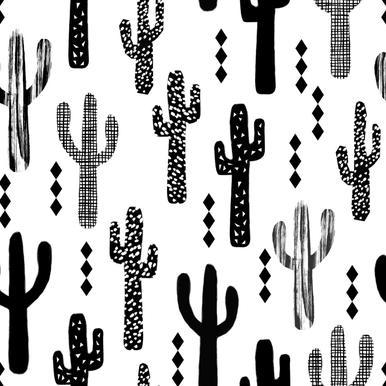 Cactus Black -Leinwandbild