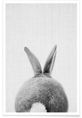 Monochrome Kaninchenschwanz-Fotografie -Poster