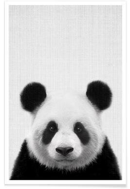 Panda - Photo en noir et blanc affiche