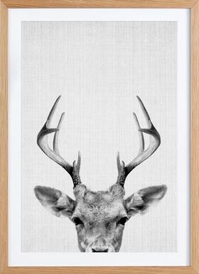 Print 38 - Poster in Wooden Frame
