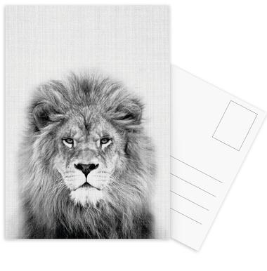 Lion -Postkartenset