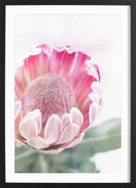 Print 400 -Bild mit Holzrahmen