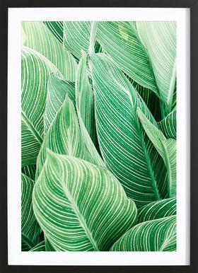 Print 144 -Bild mit Holzrahmen