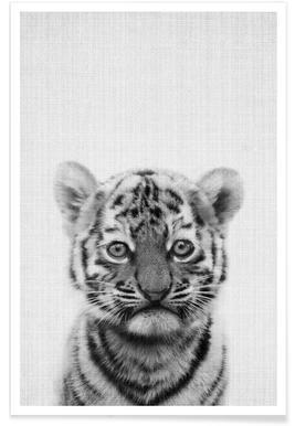 Tigre - Photo en noir et blanc affiche