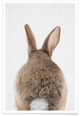 Kaninchenschwanz-Farbfotografie -Poster
