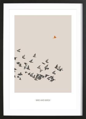 Bird And Birds Framed Print