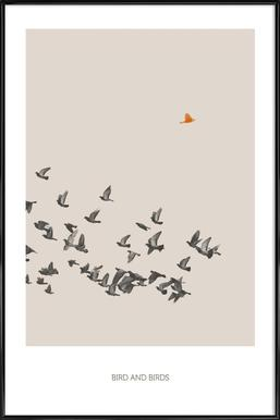 Bird And Birds Framed Poster