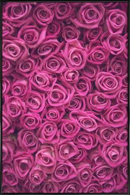 Pink Roses -Bild mit Kunststoffrahmen