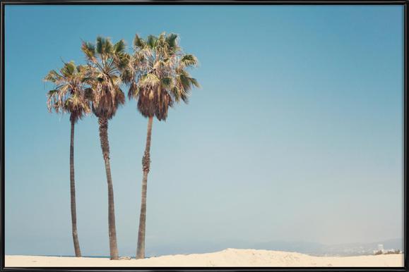 Venice Beach Palms Framed Poster