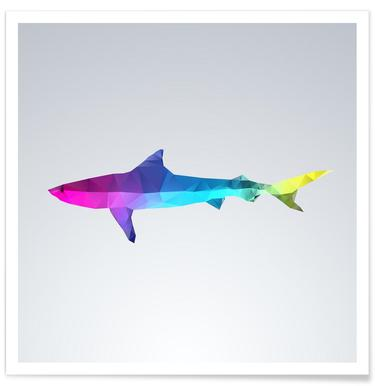 Geometric Shark Colourful Poster