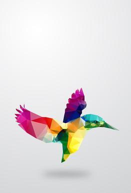 Glass Animals - Bird Acrylic Print