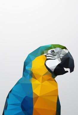 Geo Parrot Acrylic Print