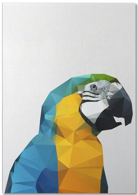 Geo Parrot Notepad