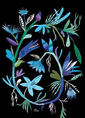 Botanica Clematis Black