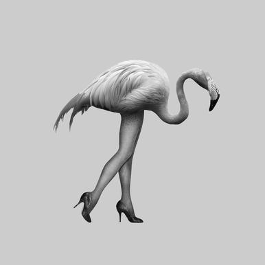 Flamingo-go Girl acrylglas print