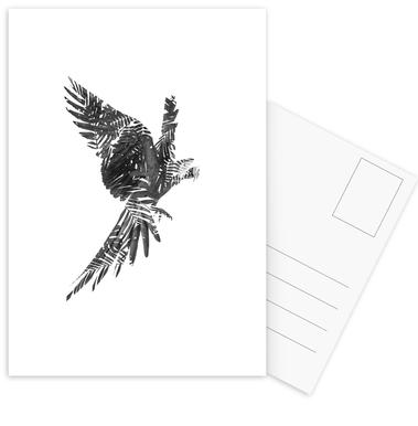 Parrot Postcard Set