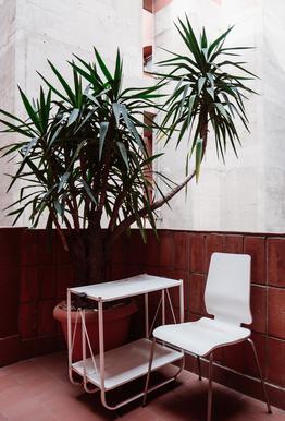 Walden Chair Aluminium Print