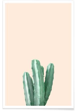 Pink Cactus - Poster