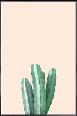 Pink Cactus - Affiche sous cadre standard