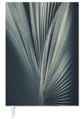 Palms-1846