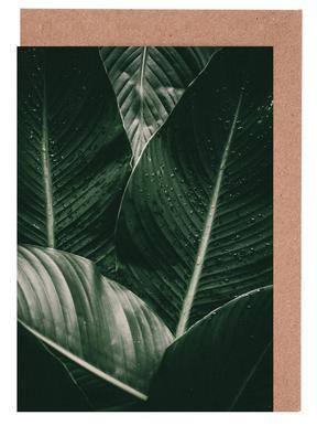 Palm Drops