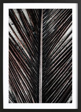 Beach Palm Patterns 12 Framed Print