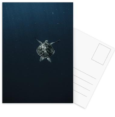 Flying -Postkartenset