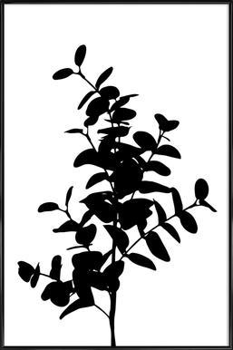 Eucalyptus Bunch Framed Poster
