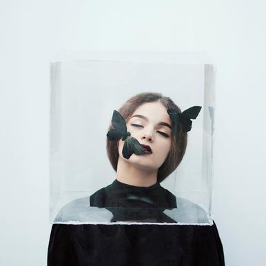 Life In A Box Aluminium Print