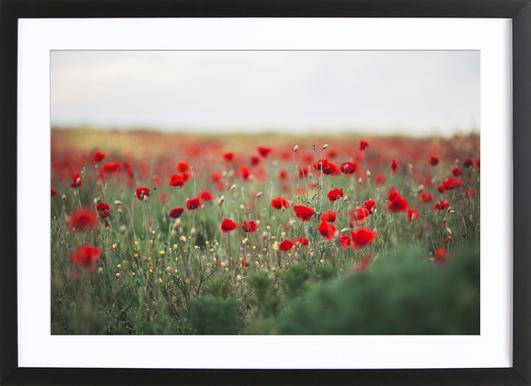 Poppy Field ingelijste print