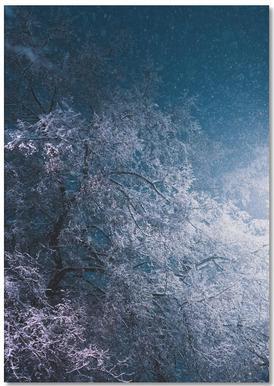 Winter Night Notebook