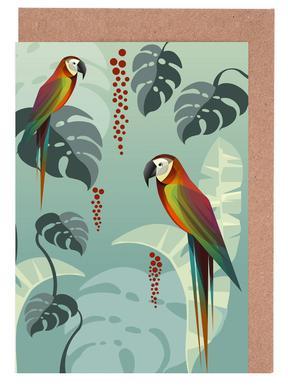 Parrot Greeting Card Set