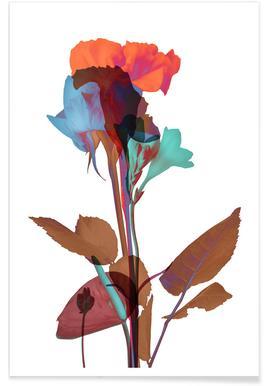 Ode aux Fleurs (Orange-Blue-Mint) - Premium Poster
