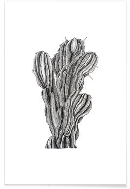 Bush Cactus Pencil Sketch Poster