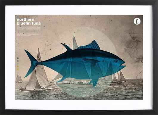 Northern Bluefin affiche sous cadre en bois