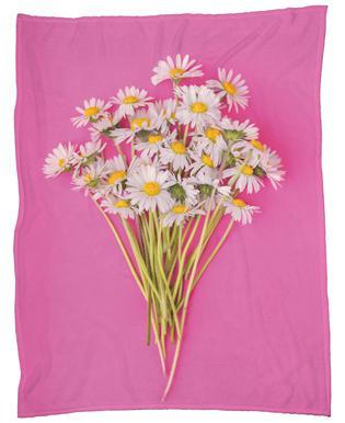 Bouquet of Daisies Fleece Blanket